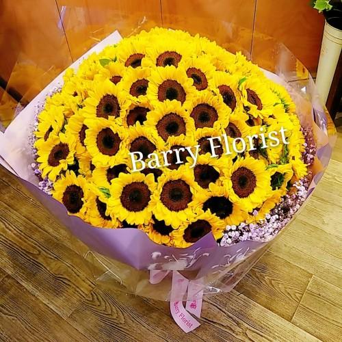 BOU 0146  99支向日葵
